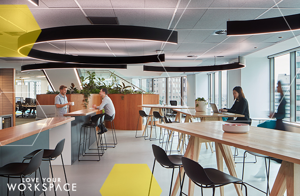 Suncorp Workspace CBRE New Zealand 03